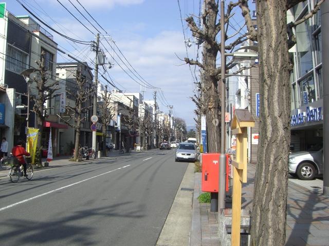 現在の寺町通りー2