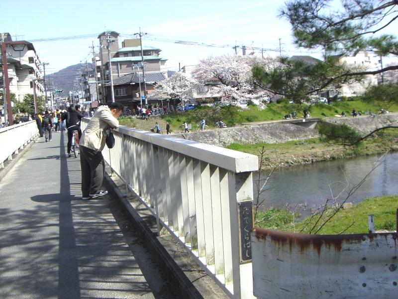橋の上から景色を